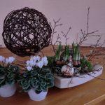 """Bloemstuk 31 december 2017 Compositie van takken, witte cyclaam, groen mos, bloembollen en witte cyclaam, passend bij Oud en Nieuw en bij Openbaring 21 : 1 tot en met 5.  Een nieuwe hemel en een nieuwe aarde.   De takken lijken dood, het oude is voorbij.  De symboliek voor de witte cyclaam is """"vaarwel en afscheid"""".  De bloembollen, die al uitlopen, symboliseren het nieuwe.  Het groen van het mos staat voor hoop!"""