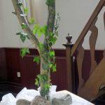 2e bloemstuk Stille Zaterdag Het prikkeldraad heeft plaats gemaakt voor de klimop. Dit is het teken van het doorgaande leven.