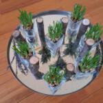 1e zondag van de 40 dagentijd  Er zijn voor elkaar. In de glazen planten we blauwe druifjes. Tussen de glazen staan boomstammetjes. De vorm van het open hart wordt geaccentueerd door een slinger van gedroogde kruiden, geurig symbool voor goede zorg.